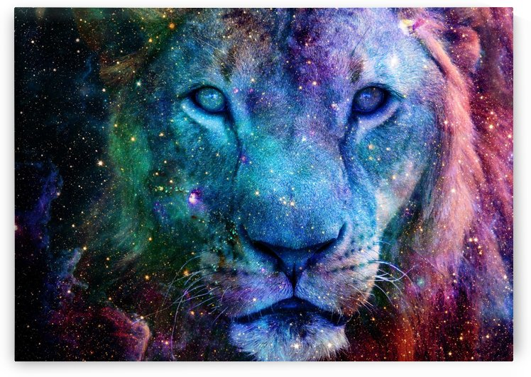Galaxy Lion Face by LemoBoy