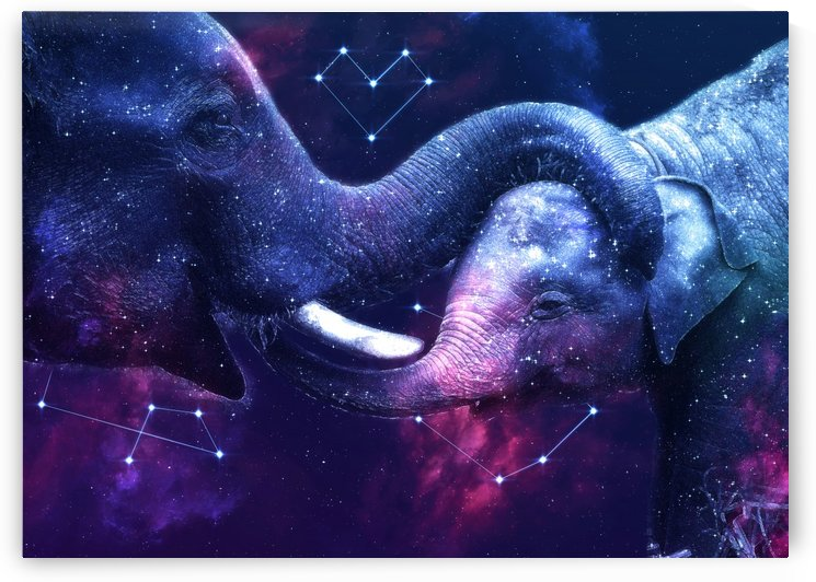 Galaxy Elephant Mother and Baby by LemoBoy