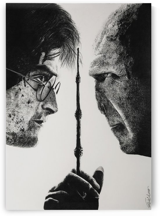 Harry Potter and Lord Voldemort by Tpencilgallery