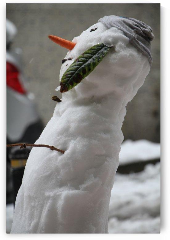 Snowman by JAMALEDDIN TOOMAJNIA