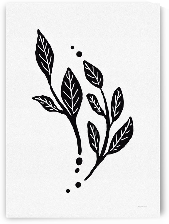 Black and White Branches with Leaves  by Gabriella David