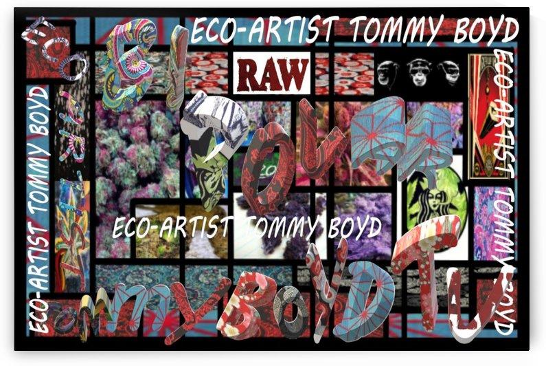 ECO ARTIST TOMMY BOYD BI POLAR TV WEED ART- 1 by Eco-Artist Tommy Boyd