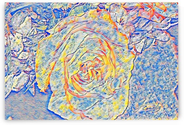 ECBB122E 0332 483A BB03 BF24150B0A8C by JLBCArtGALLERY