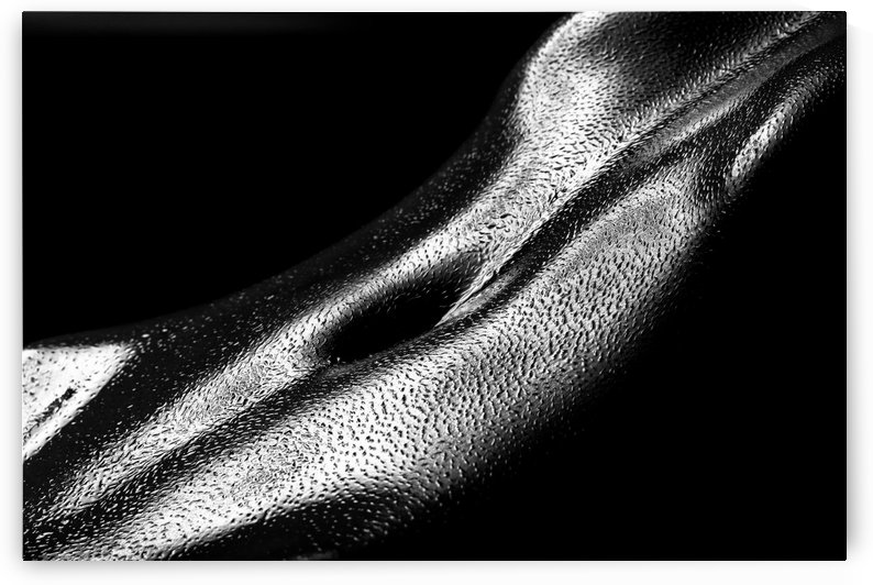 Female oily stomach close-up by Johan Swanepoel