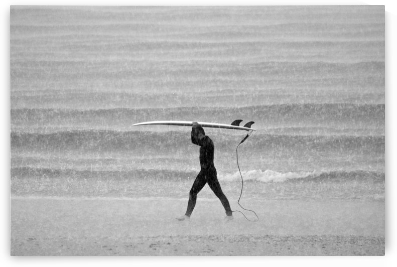 MONSOON SURFER by ANDREW LEVER GALLERY