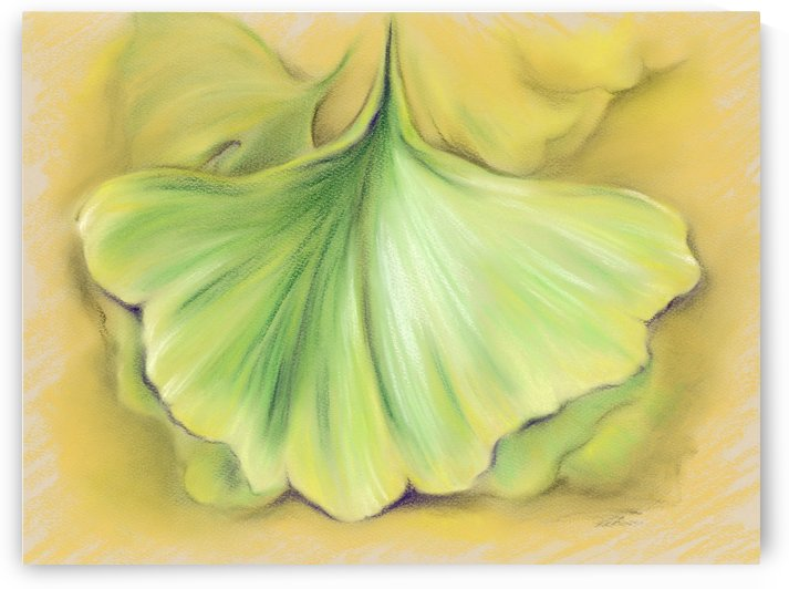 Ginkgo on the Cusp of Autumn by MM Anderson