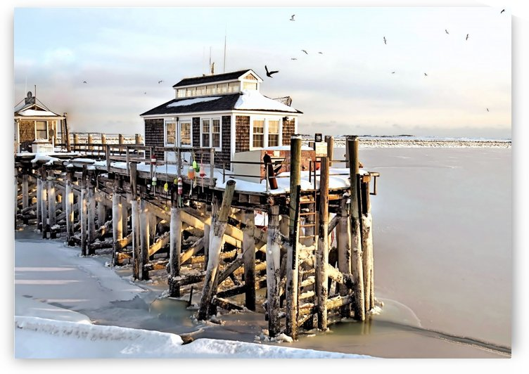 Town pier frozen by Photography by Janice Drew