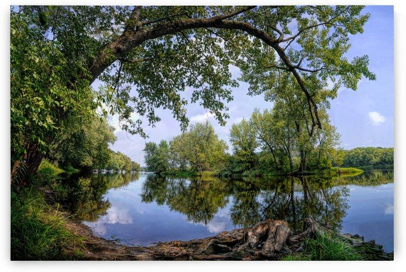 Calming Waters by James Radford