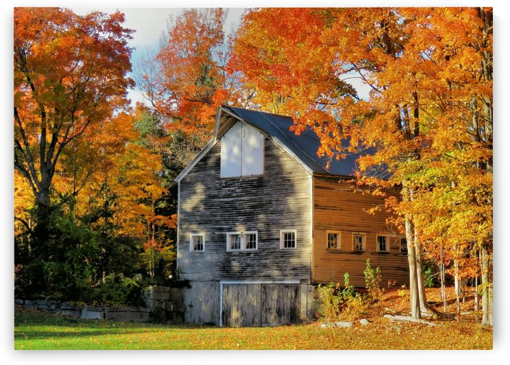Barn in Autumn by Photography by Janice Drew