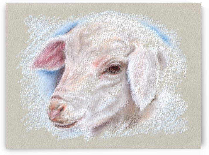 Little Lamb by MM Anderson