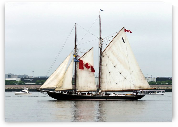 Bluenose II by Photography by Janice Drew