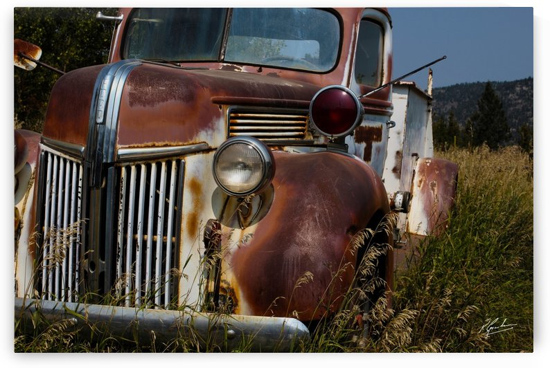 Ford Truck  by Ronnie B Goodwin