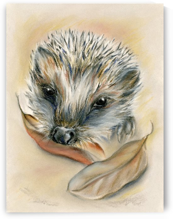 Autumn Hedgehog by MM Anderson