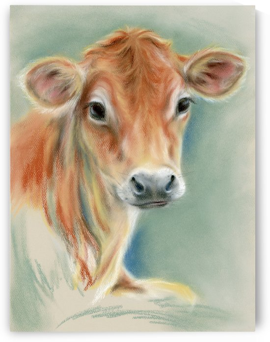 Red Calf Portrait by MM Anderson