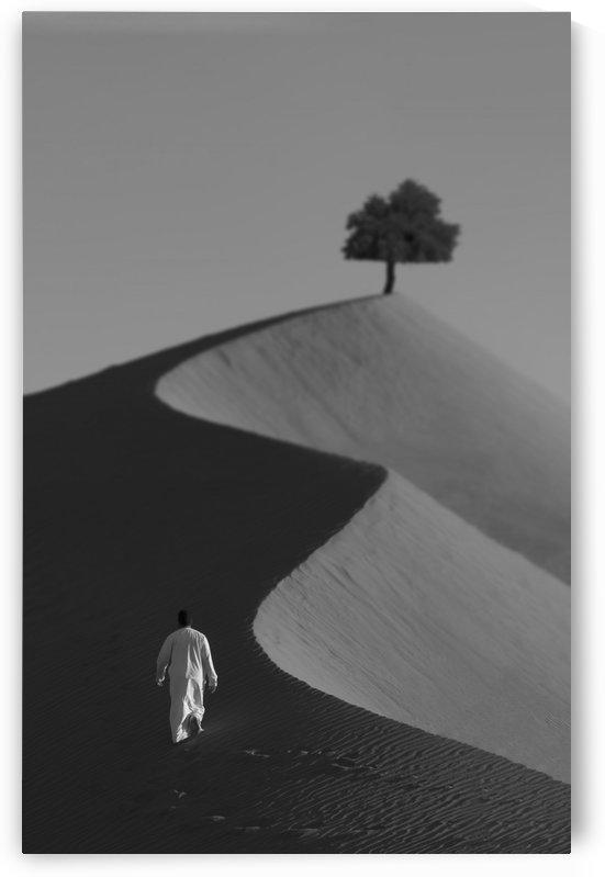 The Omani Desert by hwaishal_art