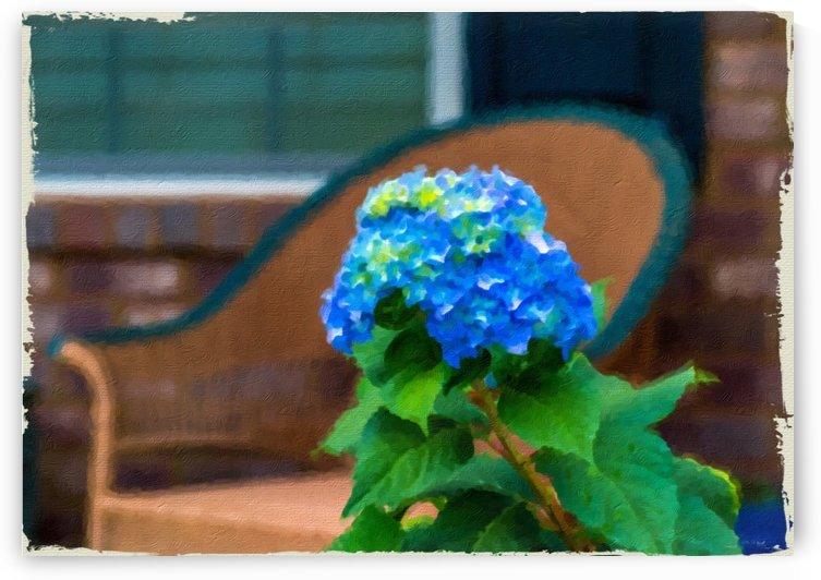 Blue Hydrangea in Oil by Darryl Brooks