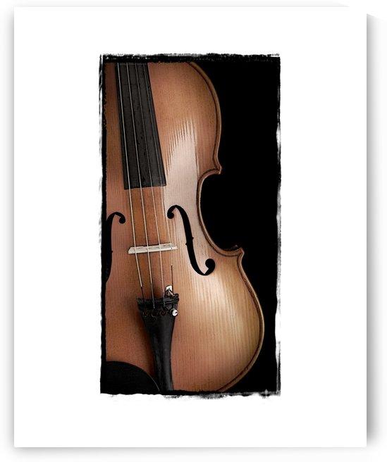 Violin   by Pat Chuprina