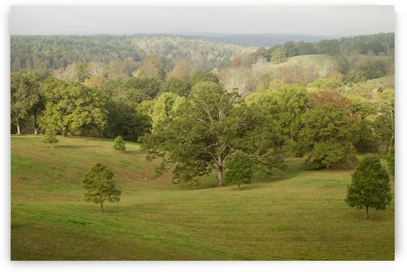 Rolling Countryside of Asheville by Lindsey McCarty