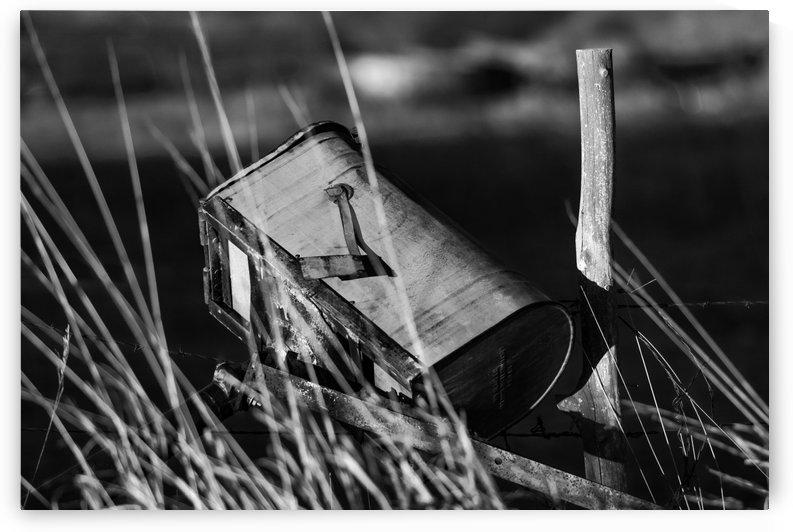Junk Mail BW by Garald Horst