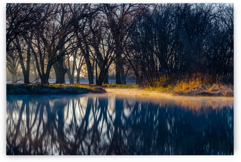 Fog Layer Filter by Garald Horst