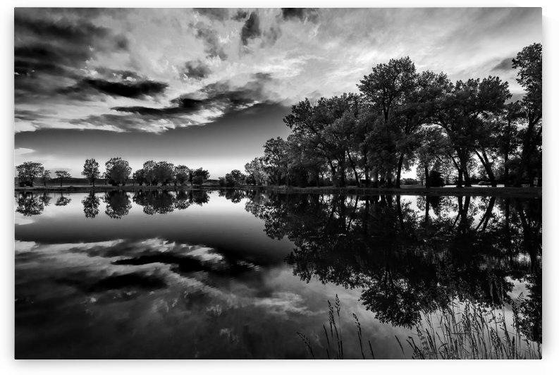 Few Water Ripples BW by Garald Horst