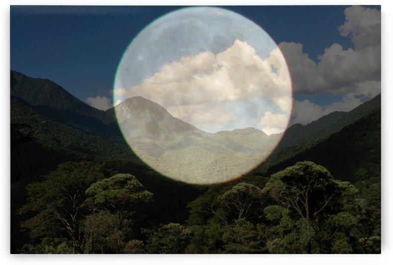 Moon vs Atlantic Forest  by Luiz Lima