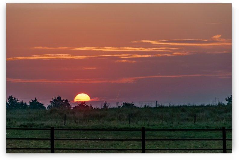 Magenta Sunrise by Garald Horst