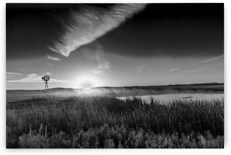 Sunrise Fog in the Sandhills BW by Garald Horst