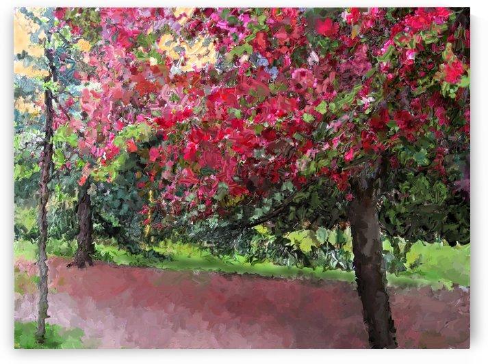 Cherry Tree by ANA BORRAS