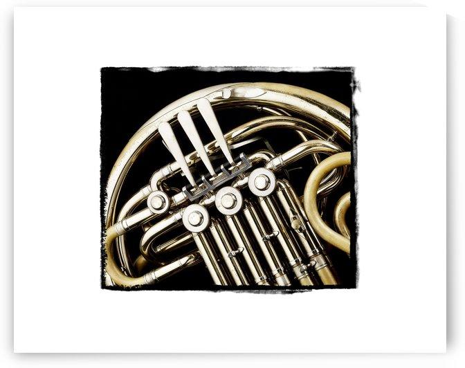 French Horn Valves by Pat Chuprina