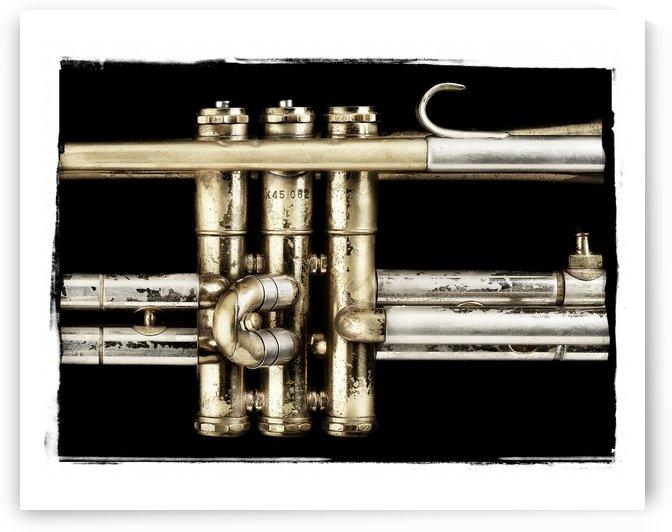 Trumpet Valves by Pat Chuprina