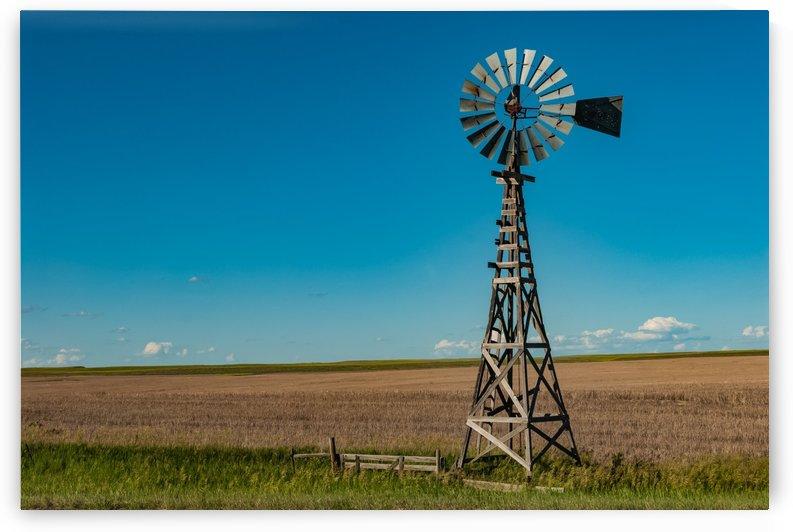 Former Plains Wind Worker by Garald Horst