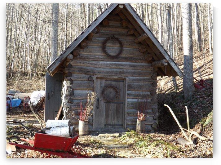 Antique Cabin by Luis Toro