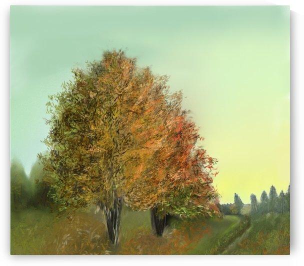 Autumn Trees by ANA BORRAS