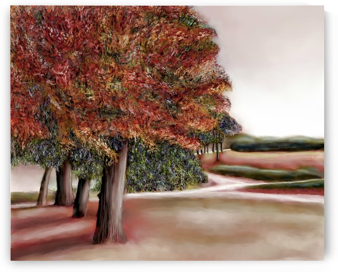 Maples landscape  by ANA BORRAS