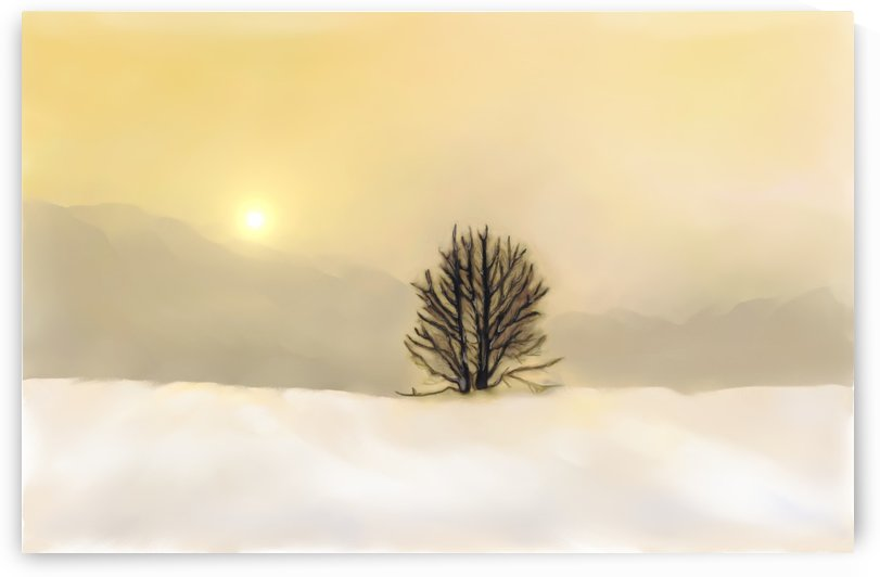 Snow at sunset by ANA BORRAS
