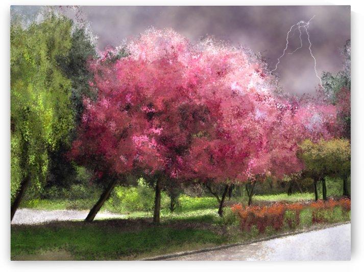 Summer Storm by ANA BORRAS