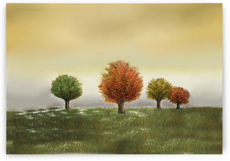 TREES AT SUNSET by ANA BORRAS