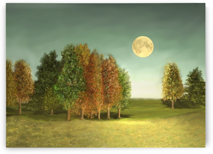 Under the Moon by ANA BORRAS