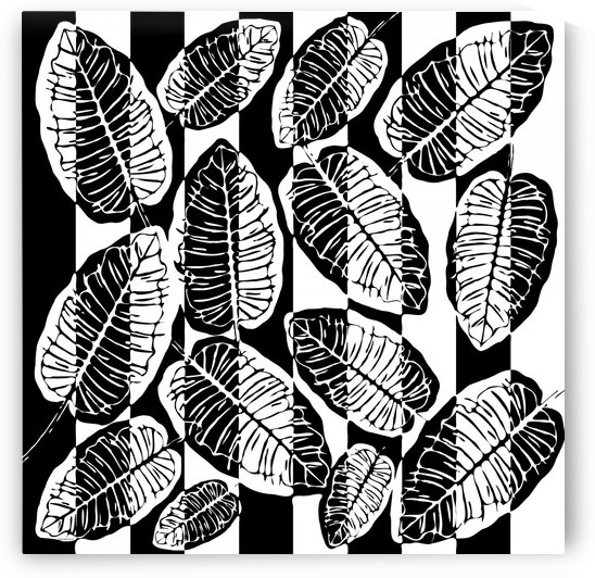 Black and white tropical leaves  by Gabriella David