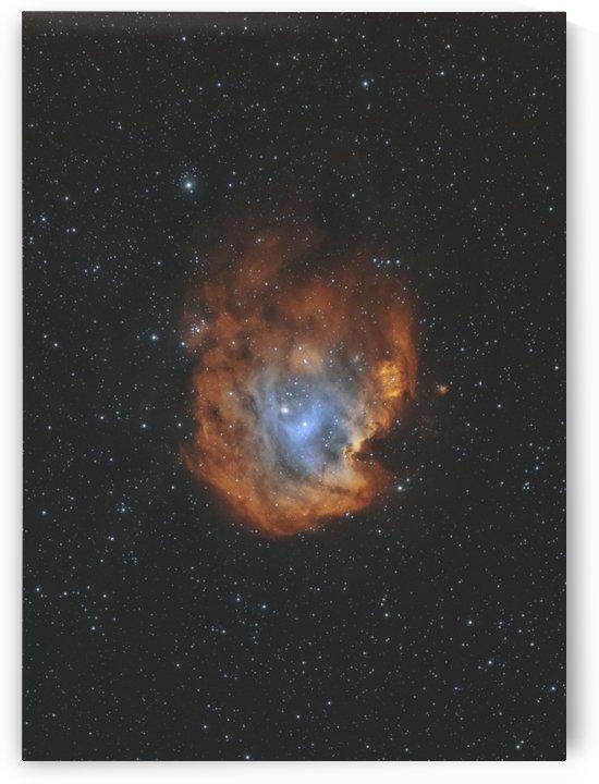 Monkey Head Nebula by RichardBoudreauAstrophotography