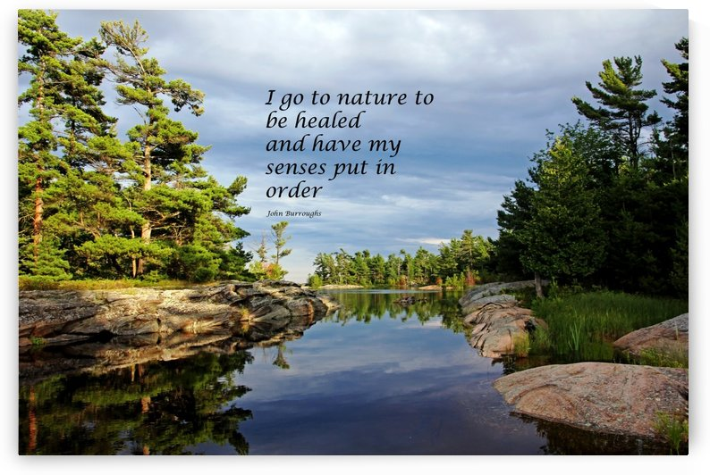 Go To Nature by Deb Oppermann