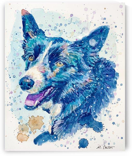 Border Collie Dog - Portrait of Habbey by Marie Santos - M Santos Art