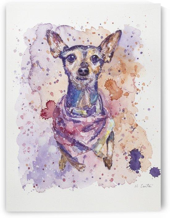 Chihuahua - Portrait of Gigi by Marie Santos - M Santos Art
