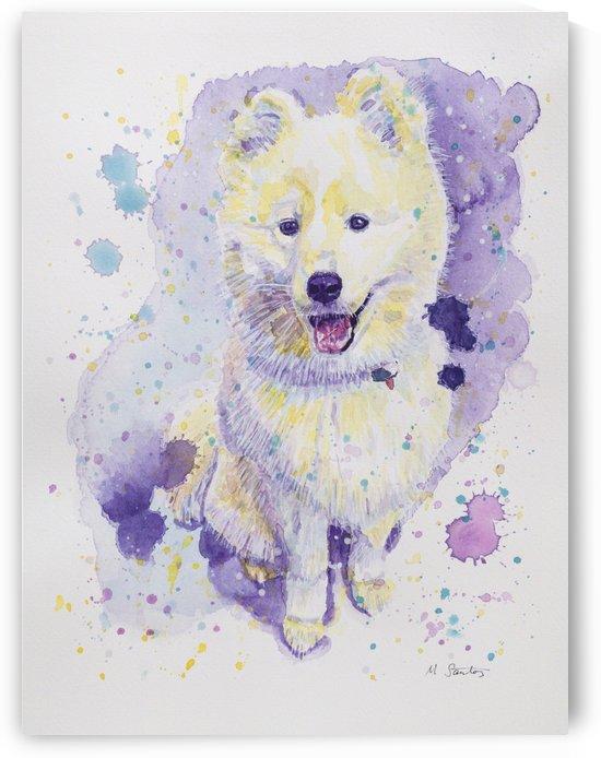 Samoyed Dog - Portrait of Juno by Marie Santos - M Santos Art