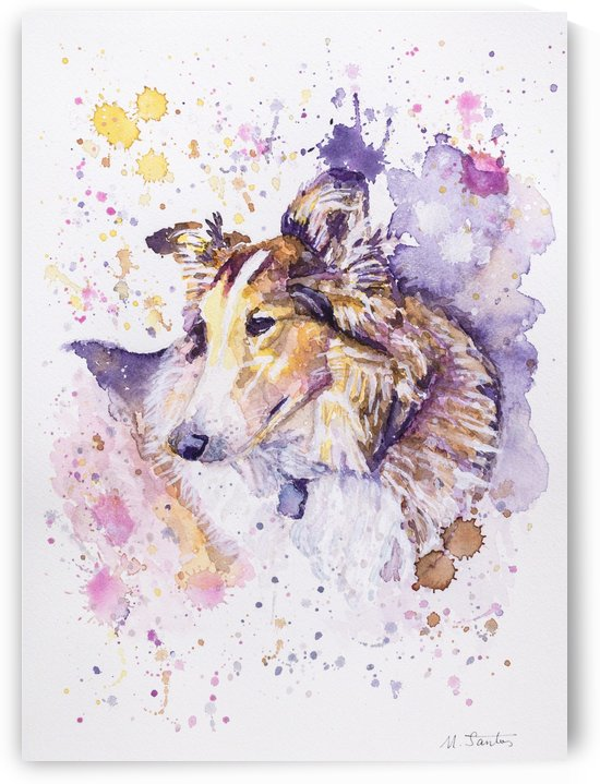 Sheltie Dog - Portrait of Aria by Marie Santos - M Santos Art