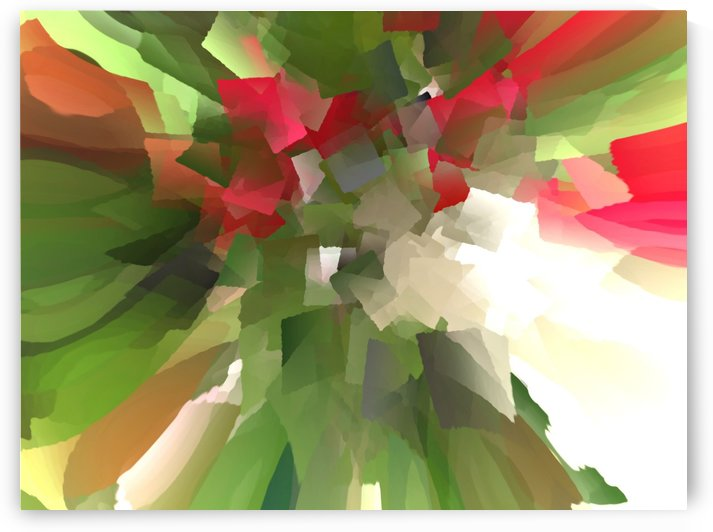 Abstract Flowers by ANA BORRAS
