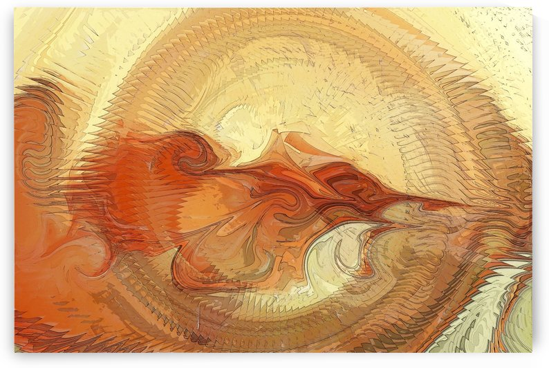 Abstract Shell by ANA BORRAS