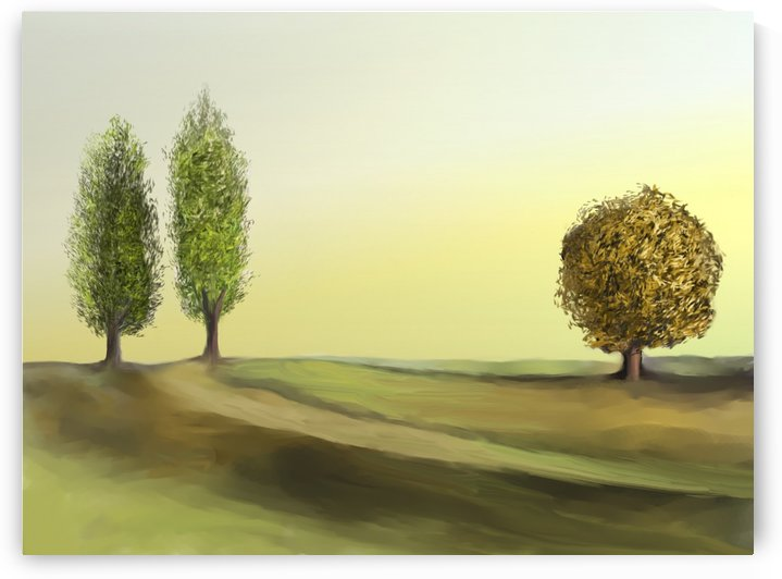 Cypresses by ANA BORRAS