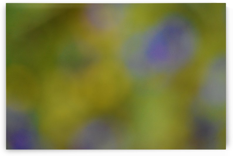 Abstract Art Photograph Bokeh - Yellow and Blue by Puzbie